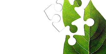Taller de implantación de un Sistema de Gestión Ambiental ISO 14001:2015